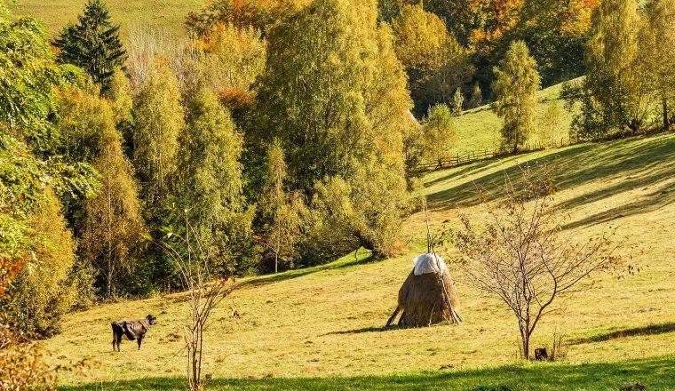 Countrysite in Romania