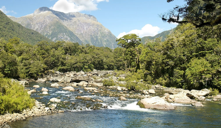 Private: Routeburn, Milford, and Kepler Tracks