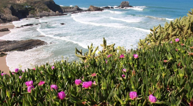 The Coastal Alentejo