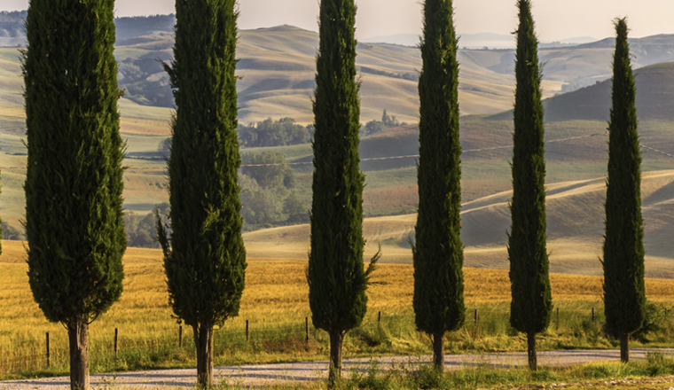 Tuscany – Short Breaks
