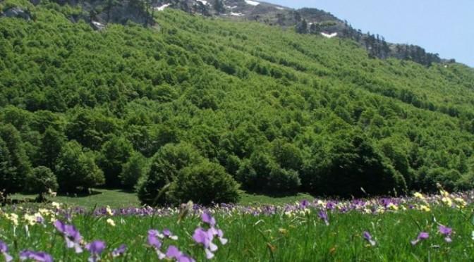 Basilicata – Pollino to the Maratea Coast