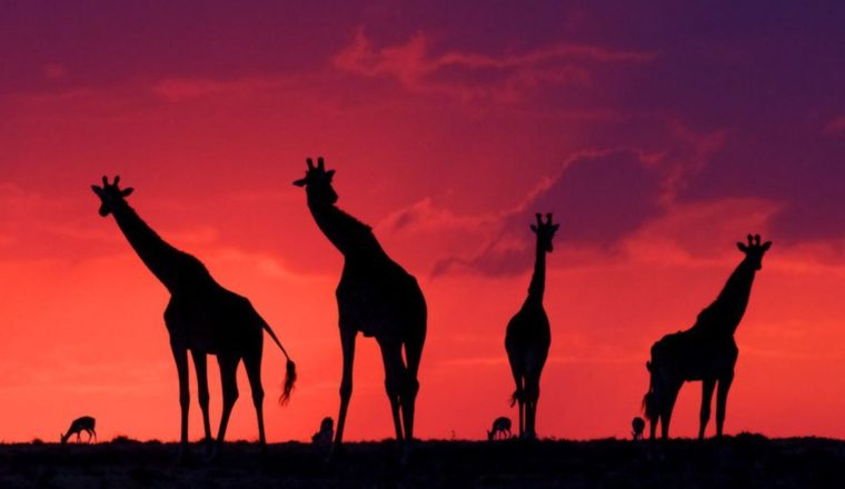 The Best Places to See the Sun Set and Rise Around the World