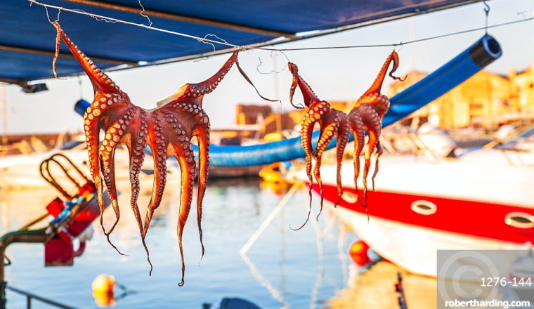 The 6 Best Places In The World To Eat Seafood