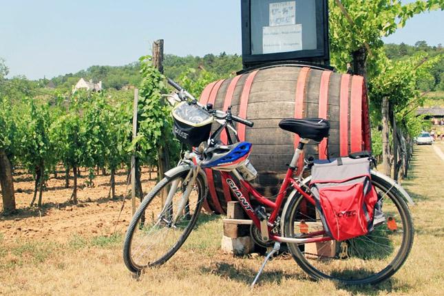 BALATON WINE AND BIKE