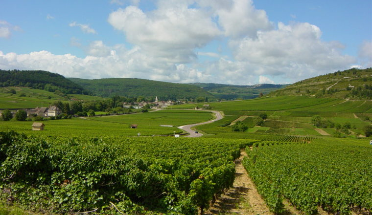 Burgundy – Dijon to Beaune