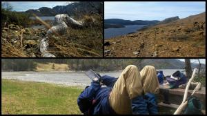 Ann Hutchings - Magical Newfoundland at the Tablelands , windswept, rugged, tundra to seascapes, diverse and beautiful and always a picnic table just when you need it!