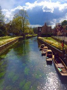 Kim Mears - Canterbury England while walking The Pilgrims Way